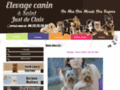 Elevage de chien http://www.bec-elevage-canin.com